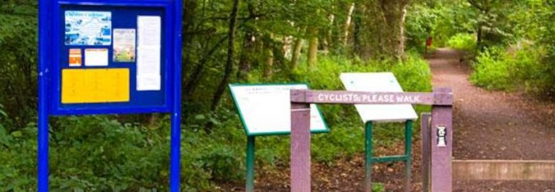 Stanney Woods Local Nature Reserve