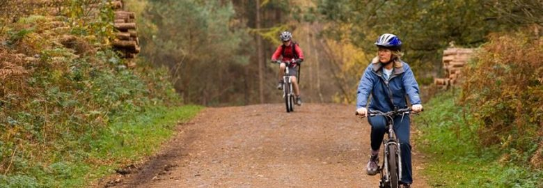 Delamere Forest Park – Cycling