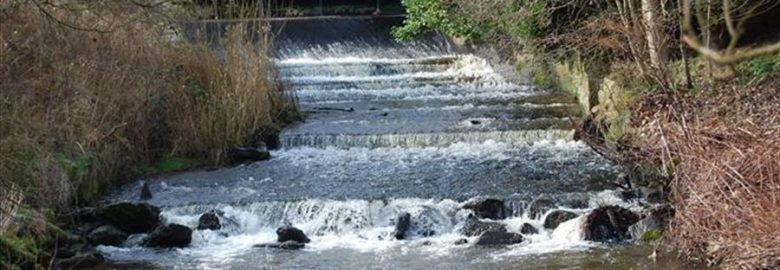 Walks for All – Macclesfield Riverside